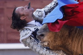 Bull fighter gored