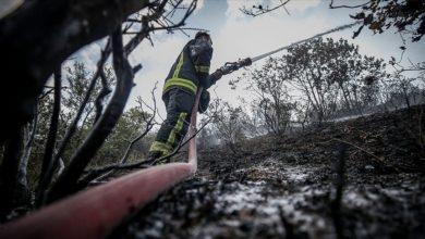 Photo of 9 ilde orman yangını! Tamamı söndürüldü
