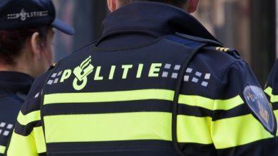 Photo of Hollandalı polis şefi Türklerden özür diledi
